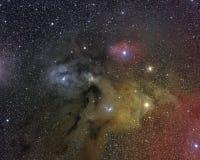 Complesso della nuvola di Ophiucus del Rho Immagine Stock Libera da Diritti