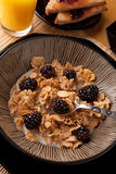 Complete Balanced Breakfast Royalty Free Stock Photos