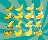 Complete set of bananas Royalty Free Stock Photography