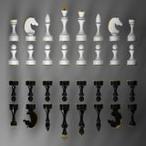 Complete set of chess pieces Stock Photos