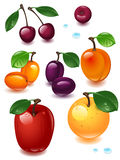 Complete set fruit. On a white background Royalty Free Stock Image
