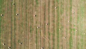 Completi giù la vista delle balle di fieno sul campo dell'agricoltura stock footage