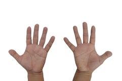Completi le mani con cinque dita ciascuna Immagini Stock Libere da Diritti
