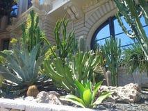 Complex omvat een casino en een Grote Opera van Monte Carlo, Monaco stock fotografie