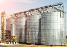 Complex for storage of oilseed and other grains, agribusiness, farming. Agriculture stock photo