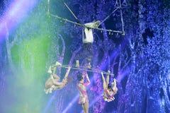 Complex swing acrobatics Royalty Free Stock Photography