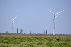 Wind generators on the summer field. royalty free stock image