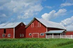 Complexe des granges rouges de la ferme du Vermont photo stock