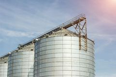 Complexe moderne de ferme pour stocker le grain, les céréales, le maïs et le colza oléagineux, agriculture, cône, plan rapproché, photo stock