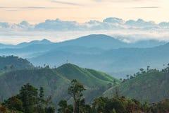 Complexidade da paisagem da montanha e diversidade da árvore da floresta com as baixas nuvens bonitas na parte superior foto de stock royalty free