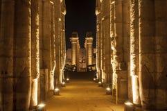 Complexo famoso de Templo de Luxor na noite Fotografia de Stock Royalty Free