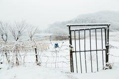 Complicações cobertos de neve da porta e do fio do ferro imagens de stock royalty free