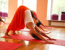 Complicated yoga pose Royalty Free Stock Images