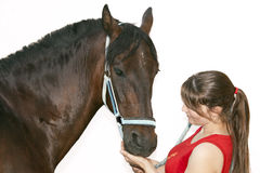 Complicity. Woman petting her horse showing complicity between them stock photos
