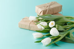 Compliment gift with spring white tulips Stock Photos