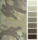 Complimentary chart palette Stock Images