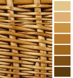 Complimentary chart palette Stock Photography