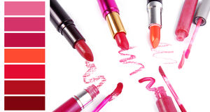 Complimentary lipstick color chart Royalty Free Stock Photo