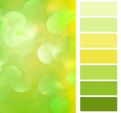 Complimentay color chart Stock Photos