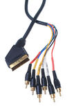 Component cable Stock Image