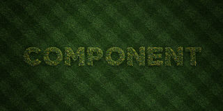 COMPONENT - fresh Grass letters with flowers and dandelions - 3D rendered royalty free stock image Stock Image