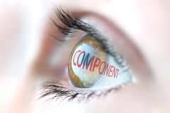 Component reflection in eye. Royalty Free Stock Image
