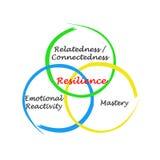 Componentes da resiliência ilustração do vetor