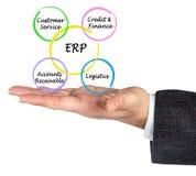 Componentes do ERP imagens de stock royalty free
