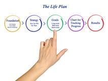 Componentes do plano da vida fotografia de stock royalty free