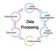 Componentes do processo de dados ilustração royalty free