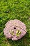 Componentes lúpulo e cevada da cerveja na pedra de moer imagens de stock