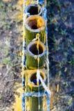 Componentes tallados velas Imagen de archivo libre de regalías