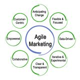 Agile Marketing Properties. Components of Agile Marketing Properties Stock Photos