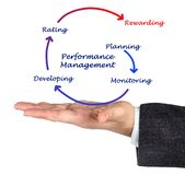 Components of Performance Management. Five Components of Performance Management royalty free stock images
