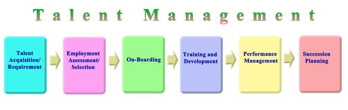 Components of Talent Management. Six Components of Talent Management stock illustration
