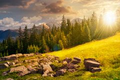 composé alpin de paysage d'été au coucher du soleil en égalisant la lumière image stock