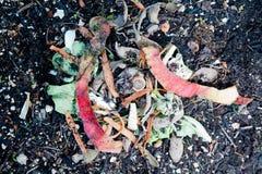 Compos ed earthworms fotografia stock