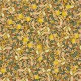 composable susi liście deseniują płynnie Obraz Royalty Free