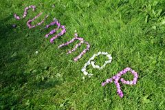 Composed of flowers. On the grass, the word summer is composed of flowers royalty free stock images