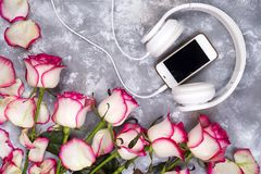 Composed frame of the roses and mobile phone with headphones. Wonderful flatlay frame composed of the roses and mobile phone, headphones on a stone background royalty free stock photos