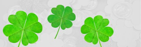 Composed image of green clover. Digital composite of Composed image of green clover royalty free stock images