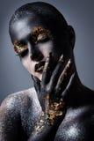 Composição bonita, artística Fotos de Stock Royalty Free
