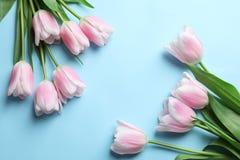 Composição bonita com as tulipas para o dia do ` s da mãe Fotos de Stock