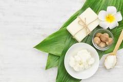 Composição bonita com manteiga, sabão e porcas de shea imagens de stock royalty free