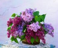 Composição bonita das flores na cesta Imagens de Stock