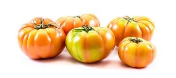 Composição caseiro dos tomates (lycopersicum do Solanum) Fotografia de Stock