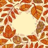 Composição circular das folhas de outono decorativas ilustração stock