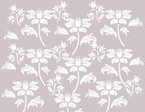 Composição clássica do ornamento da flor Ilustração do Vetor