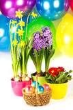 Composição colorida de easter. Ovos de Easter w Imagem de Stock