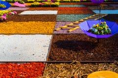 Composição colorida para um jardim Imagem de Stock